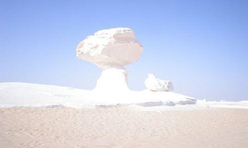 Zdjecie EGIPT / Pustynia Biała Wschodnia / gdzieś ... / Grzyb na Pustyn
