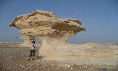 Zdjecie EGIPT / White Desert / - / -