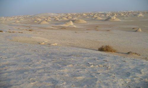 Zdjecie EGIPT / - / - / White desert cd.