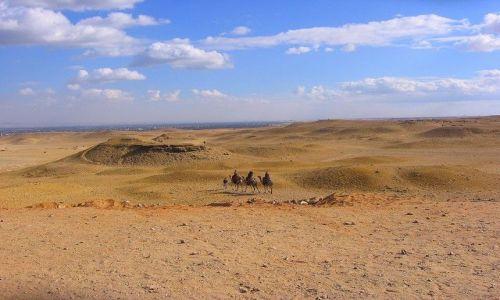 Zdjęcie EGIPT / Afryka / Giza / na pustyni