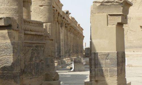 Zdjęcie EGIPT / luxor / . / luxor swiatynia