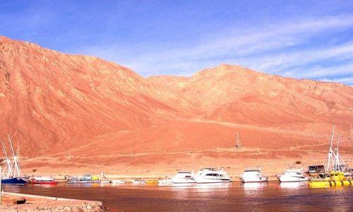 Zdjęcie EGIPT / Zatoka Akaba / Taba / port