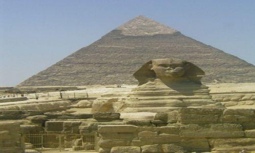 EGIPT / - / Giza / Typowy widoczek z Egiptu