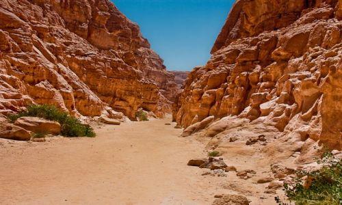 Zdjęcie EGIPT / Półwysep Synaj / Kolorowy Kanion / Kolorowy Kanion