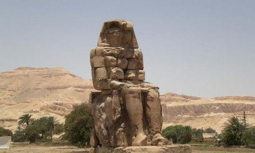 Zdjęcie EGIPT / - / Luxor / Jeden z Kolosów