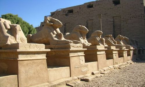 Zdjecie EGIPT / Górny Egipt / Karnak / Aleja Sfinksów