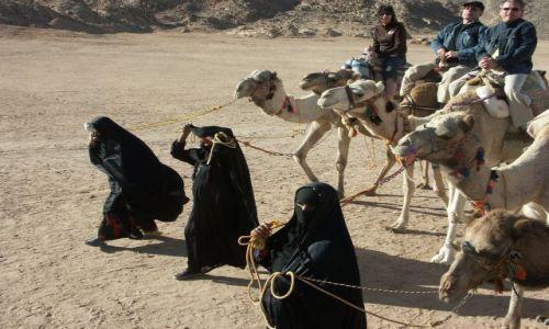 Zdjecie EGIPT / brak / wioska beduinów / ?