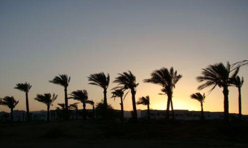 Zdjecie EGIPT / Pław. Synaj / Sharm el Sheik / Sunset