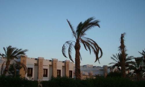 Zdjecie EGIPT / Pław. Synaj / Sharm el Sheik / Przed hotelem