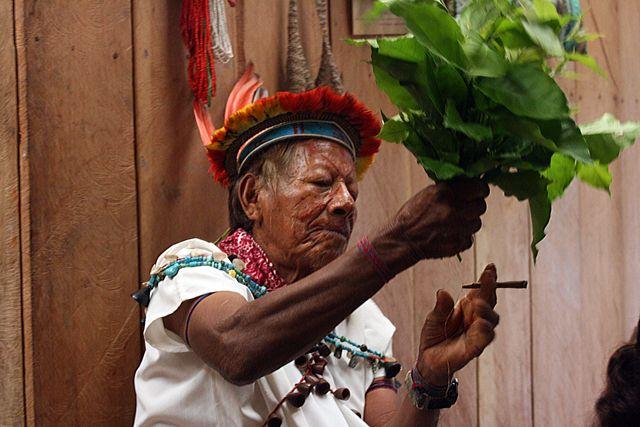 Zdj�cia: d�ungla, szaman - 92lata, EKWADOR