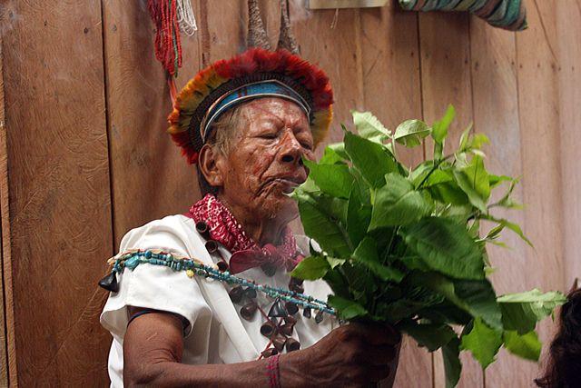 Zdjęcia: dżungla, szaman - 92lata, EKWADOR