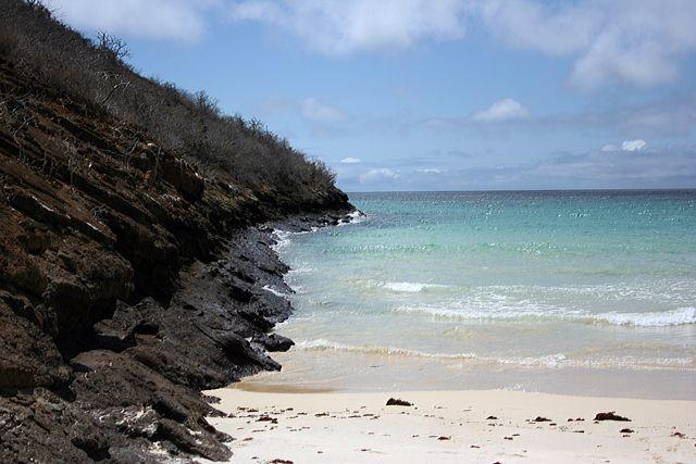 Zdjęcia: Galapagos, plaża, EKWADOR