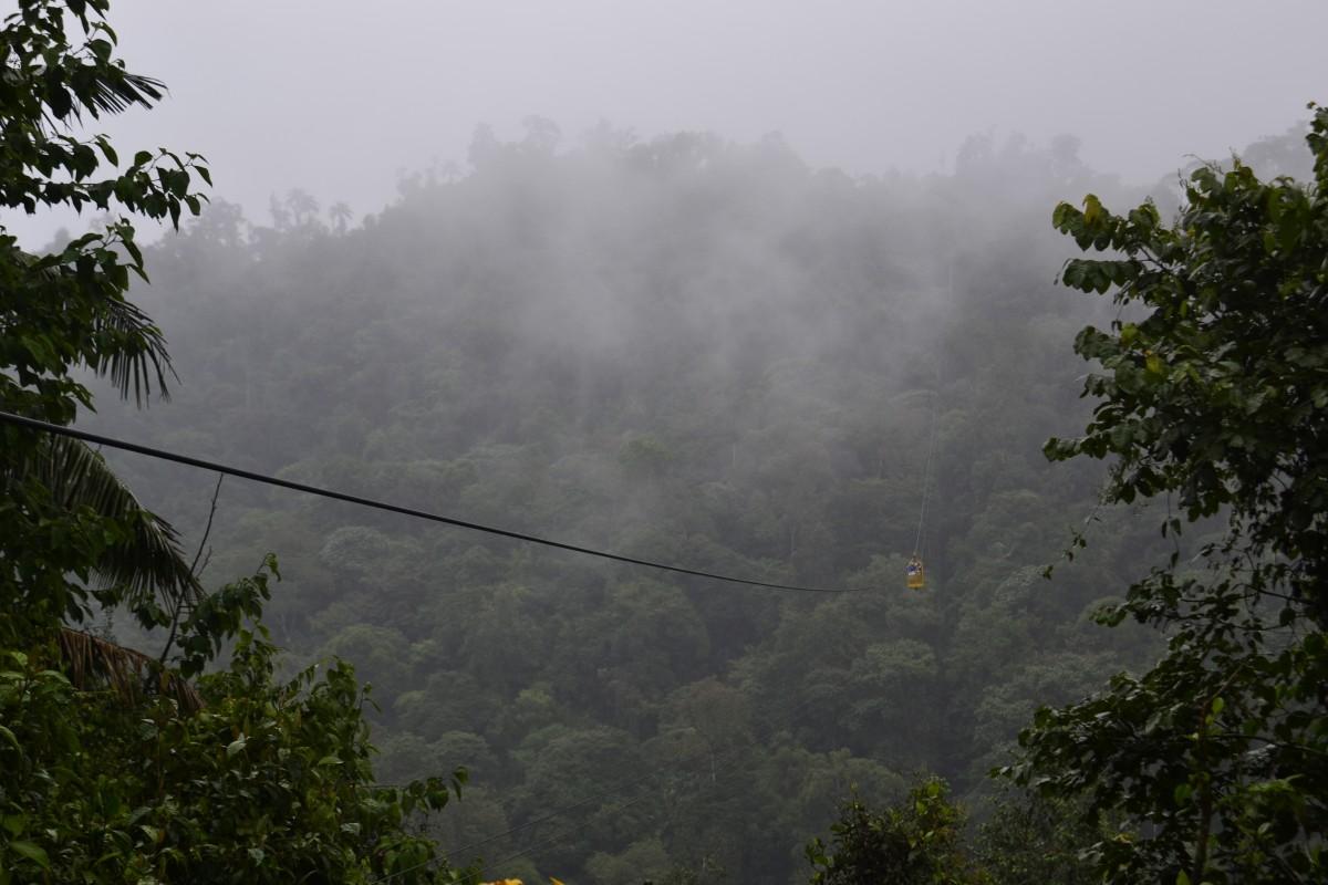 Zdjęcia: Mindo, Mindo, Kolejka nad lasem deszczowym, EKWADOR