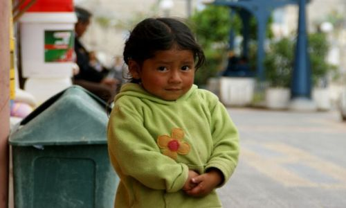 Zdjęcie EKWADOR / OTAVALO / OTAVALO / Milutka