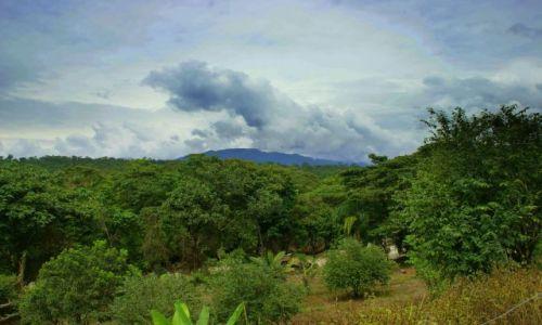 Zdjęcie EKWADOR / Paio / Paio / Dżungla