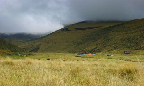 Zdjęcie EKWADOR / Chimburozo / Chimburozo / Gospodarstwo