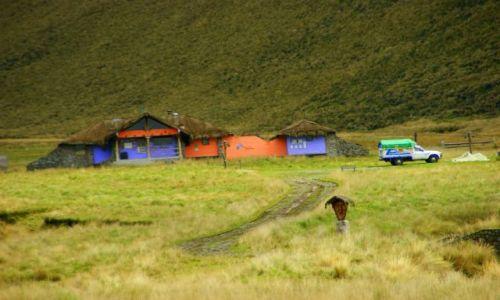 Zdjecie EKWADOR / Riobamba / Riobamba / Ranczo