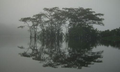 Zdjecie EKWADOR / Yasuni / Rio Salado / Świt w lesie równikowym