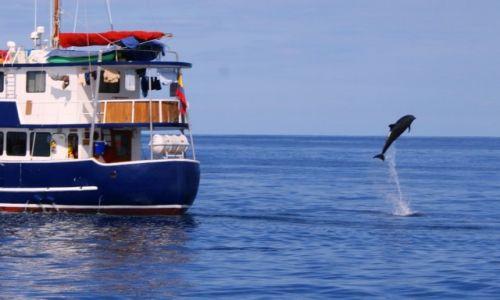 Zdjecie EKWADOR / Wyspy Galapagos / Wyspy Galapagos / zaczekajcie na mnie