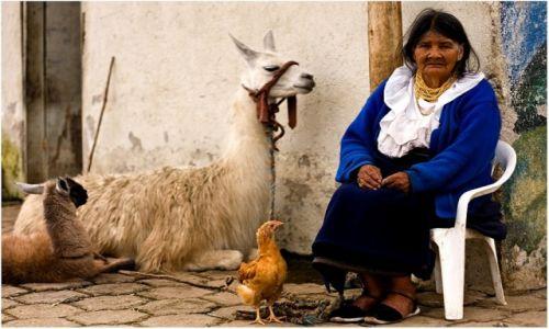 Zdjecie EKWADOR / Otavalo / Otavalo / Proza