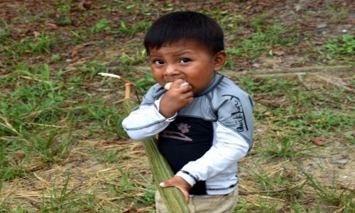 Zdjecie EKWADOR / Amazonia / lasy deszczowe / Dobry owoc bo słodki