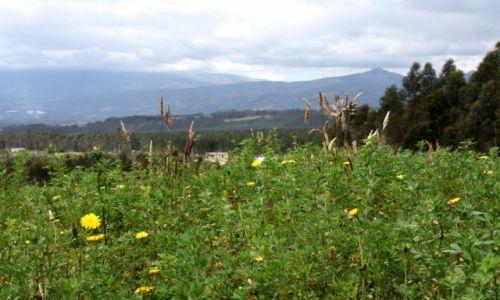 EKWADOR / aleja wulkan�w / w pobli�u Parku Narodowego Cotopaxi / U st�p wulkanu Cotopaxi