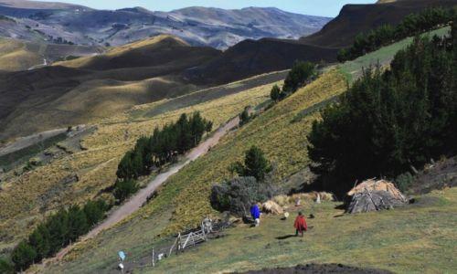 Zdjęcie EKWADOR / Andy / na zachód od Latacungi / Pasterze