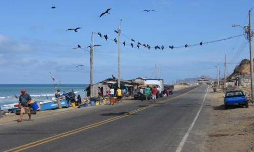Zdjęcie EKWADOR / Wybrzeże Pacyfiku / Droga z Puerto Lopez do Manty / Targ rybny