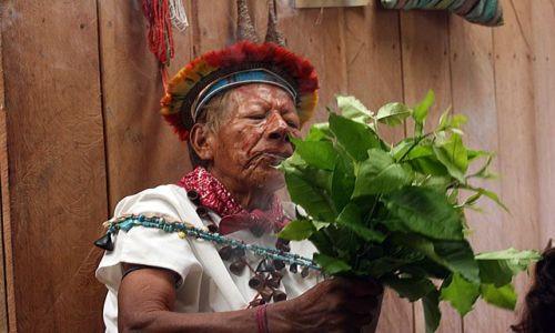 Zdjecie EKWADOR / brak / dżungla / szaman - 92lata