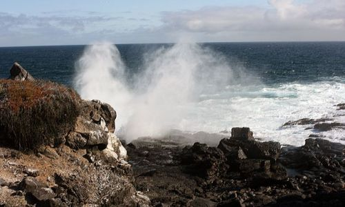 Zdjecie EKWADOR / brak / Galapagos / widok