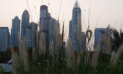 Zdjecie ZJEDNOCZONE EMIRATY ARABSKIE / Dubaj / Dubaj / konkurs