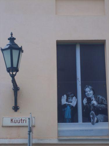 Zdjęcia: Tartu, Południowo-wschodnia Estonia, W oknie, ESTONIA
