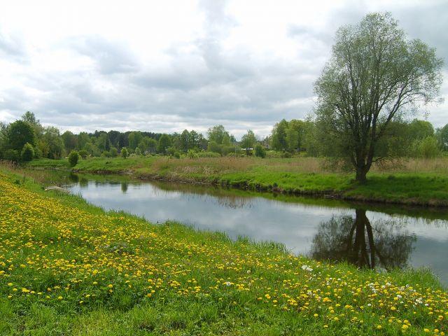 Zdjęcia: Vohandu, Południowo-wschodnia Estonia, Nad Vohandu1, ESTONIA