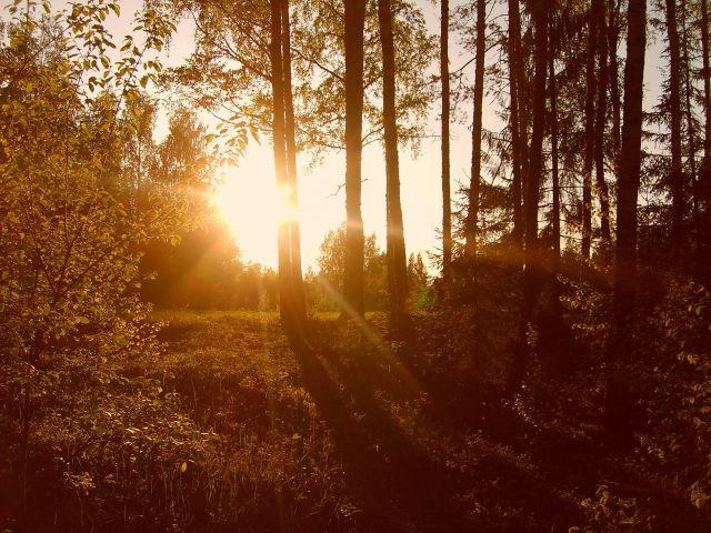 Zdjęcia: Vohandu, Południowo-wschodnia Estonia, Zachód słońca nad Vohandu, ESTONIA