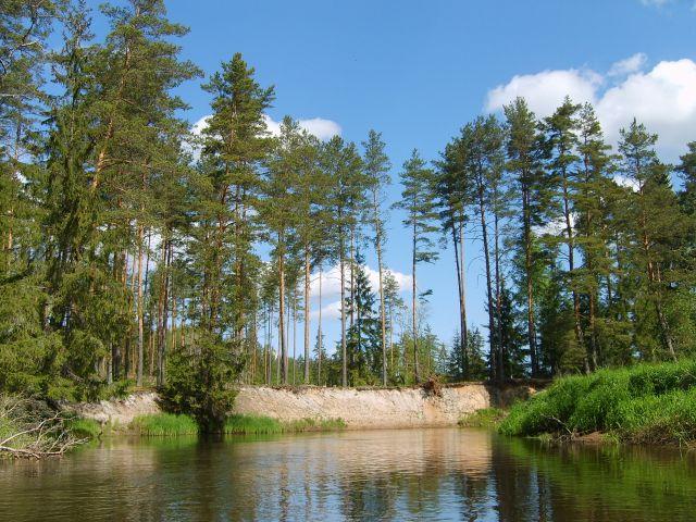 Zdjęcia: Vohandu, Południo-wschodnia Estonia, Vohandu 1, ESTONIA