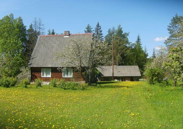 Zdjęcia: Dolina rzeki  Piusy, Południowo-wchodnia Estonia, W dolinie Piusy 1, ESTONIA