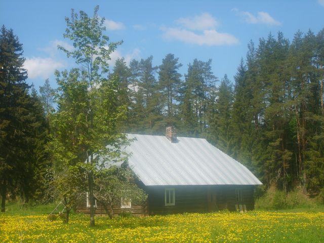 Zdjęcia: Dolina rzeki  Piusy, Południowo-wchodnia Estonia, W dolinie Piusy 2, ESTONIA