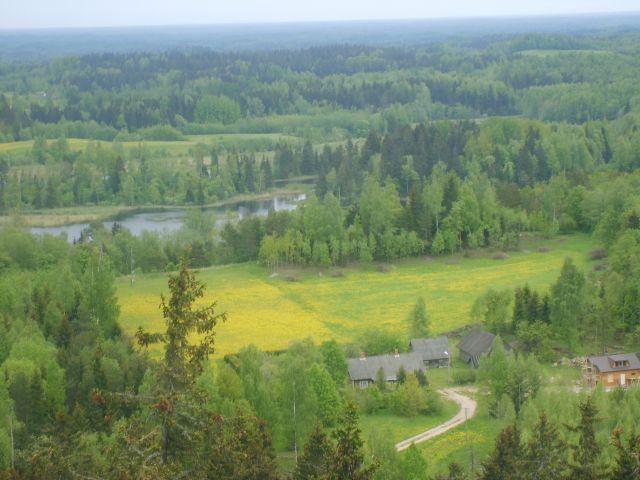 Zdjęcia: Suur Manamagi , Południowo-wchodnia Estonia, Widok z najwyższego szczytu w karajach nadbałtyckich:) 317,6m n.p.m., ESTONIA