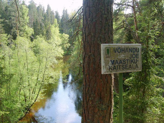 Zdjęcia: Vohandu, Południowo-wschodnia Estonia, Vohandu cd.cd.cd., ESTONIA