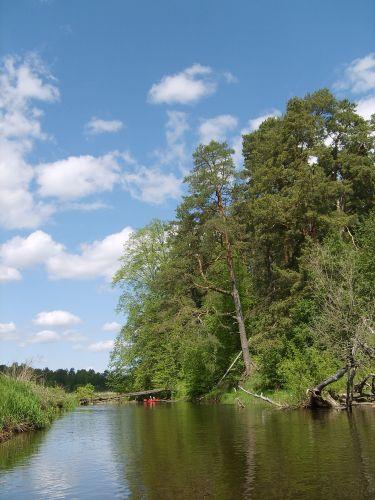 Zdjęcia: Vohandu, południo-wschodnia Estonia, Vohandu cd8, ESTONIA