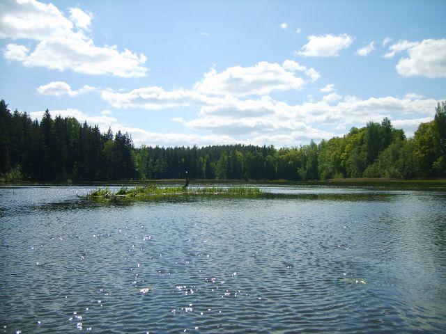 Zdj�cia: Vohandu, po�udnio-wschodnia Estonia, Vohandu cd10, ESTONIA