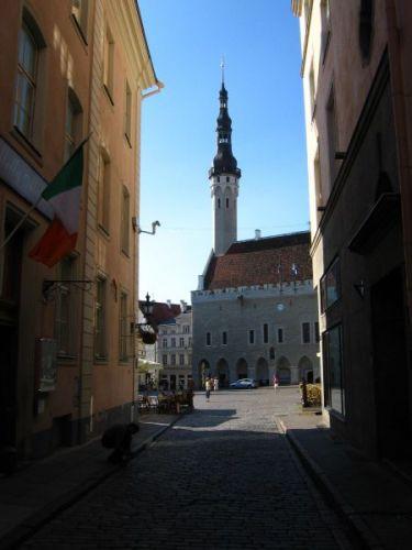 Zdj�cia: tallin, widok na rynek g��wny wczesnym rankiem, ESTONIA