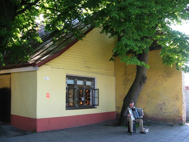 Zdjęcia: Tallin - Stare Miasto, Tallin, Harmonia  w zaułku, ESTONIA