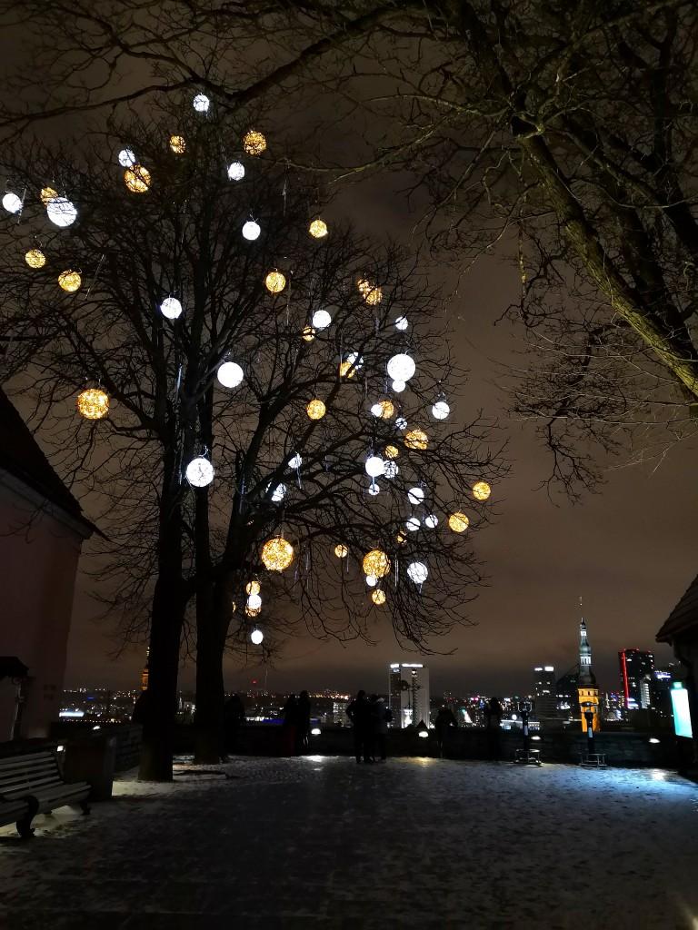 Zdjęcia: Tallin, Harjumaa, Zamiast choinki, ESTONIA