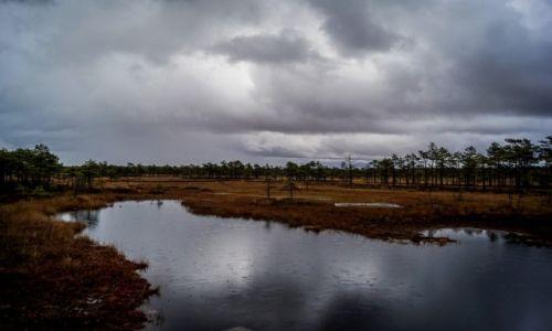 ESTONIA / Park Narodowy Sooma / Park Narodowy Sooma / Park Narodowy Sooma