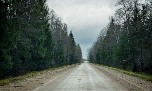 Zdjęcie ESTONIA / Park Narodowy Soomaa / Park Narodowy Sooma / W drodze do Parku Soomaa