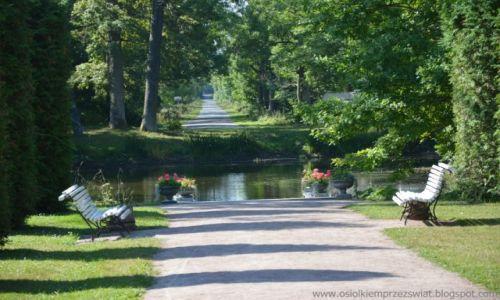 Zdjęcie ESTONIA / Lahermaa / Lahermaa / uliczka w parku
