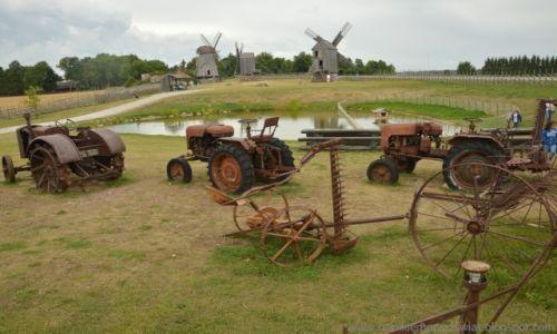 Zdjęcie ESTONIA / Saaremaa / Muzeum wiatraków / wyspa wiatraków