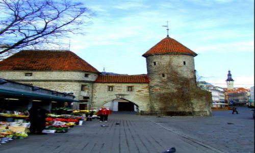 Zdjęcie ESTONIA / Tallinn / Tallinn / kawałek średniowiecznej historii
