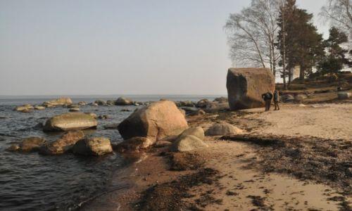 Zdjęcie ESTONIA / Park Narodowy Lahemaa / Kasmu / Głazy narzutowe